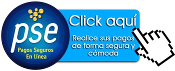Pago-Online-PSE